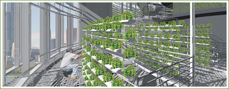 verticalfarms